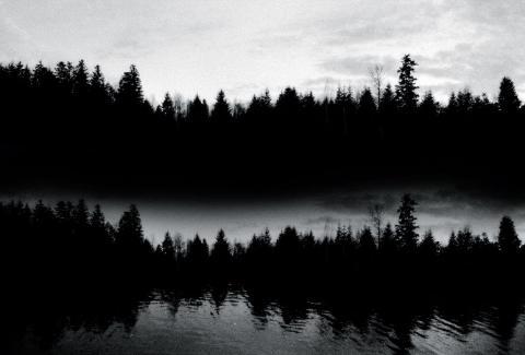 Babar, le transparent noir © Aurélia Lüscher